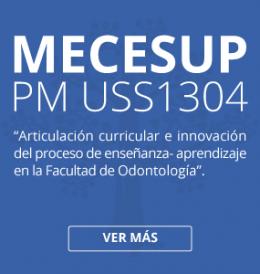 PM USS1304