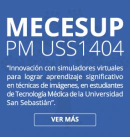 MECESUP PM USS1404