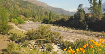 Arborización para evitar Derrumbes en S. José Maipo