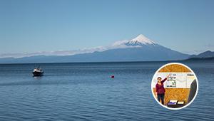 Proyecto de infraestructura para el borde costero del Lago Llanquihue
