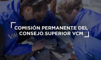 BANNER VCM_comision