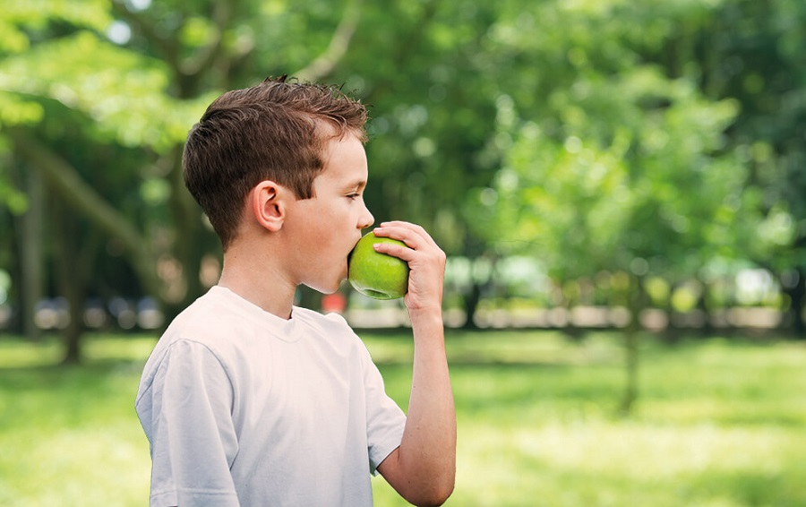 Propuesta multidisciplinaria para enfrentar la obesidad infantil