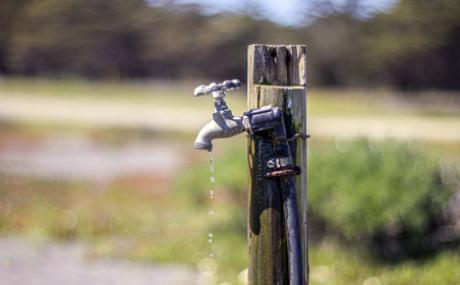 ¿Cuál debe ser el rol del agua en la legislación y en el ordenamiento constitucional?
