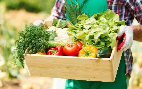 La importancia de la Gastronomía Sostenible