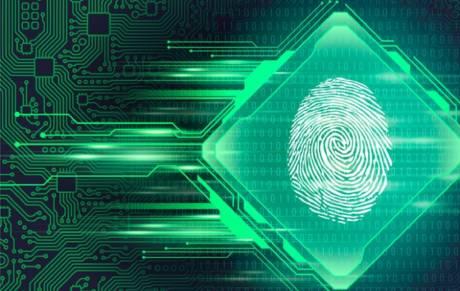Huella digital: ¿Cómo proteger nuestro paso por Internet?