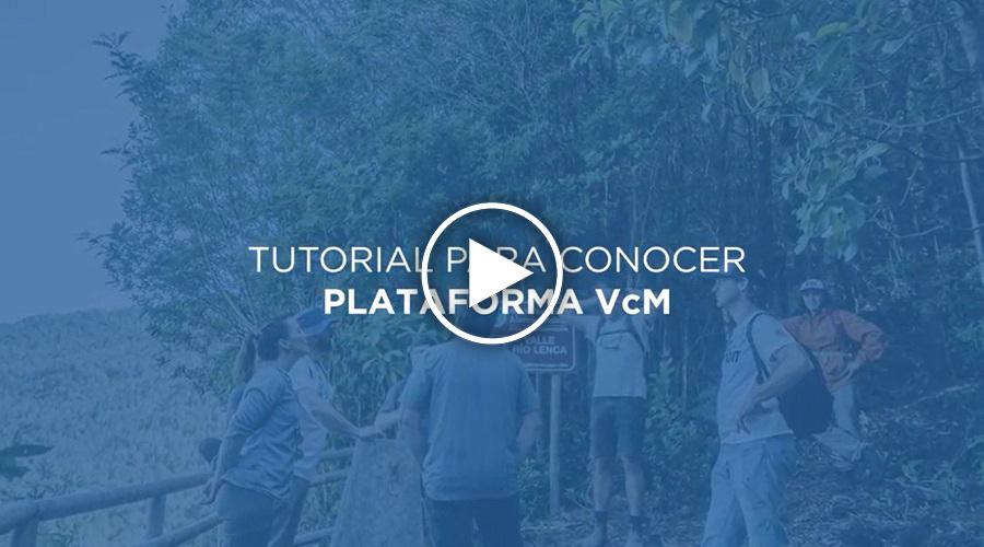 tutorial-plataforma