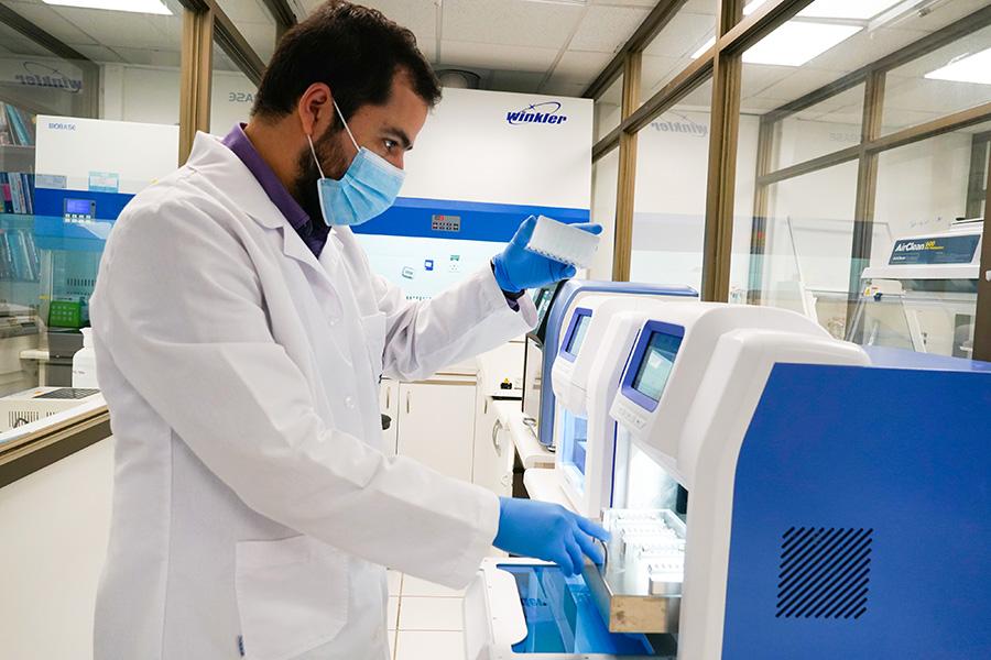 Desarrollan vacuna que permitirá prevenir enfermedades en salmones