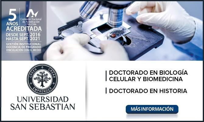 15_ BANNER DOCTORADOS-A_VBº