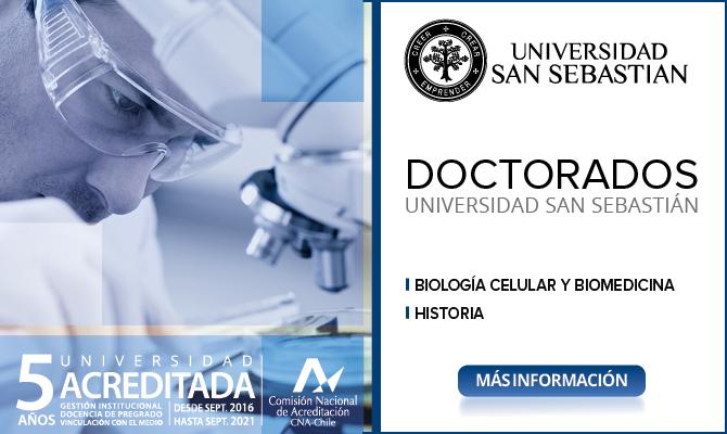 15_ BANNER DOCTORADOS_ok