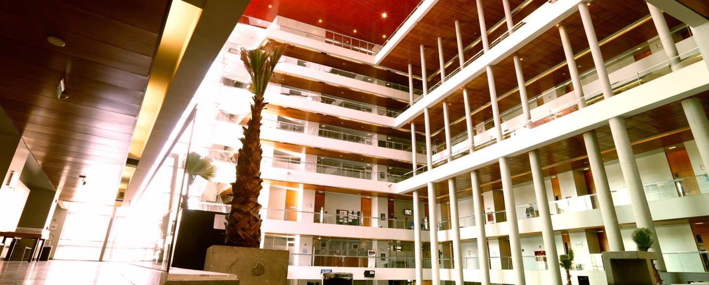 Bellavista - Universidad San Sebastián