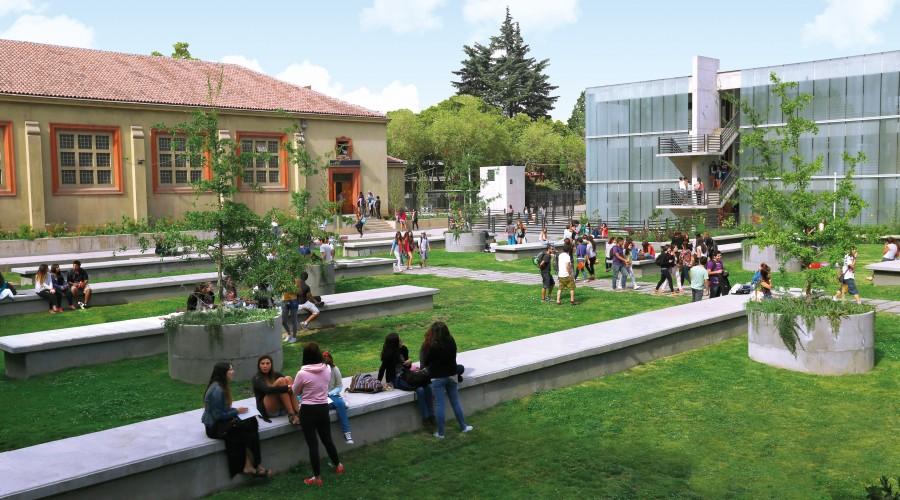 Campus Los Leones
