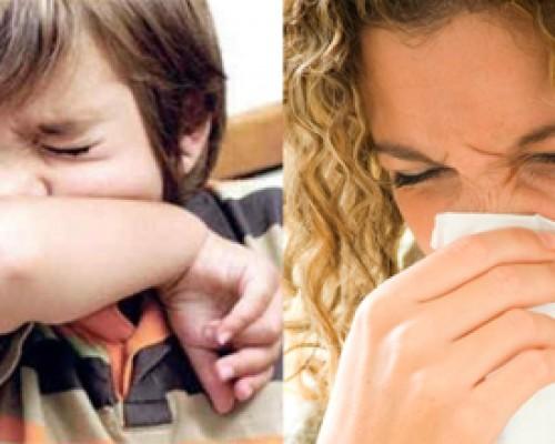 D_alergia en niños