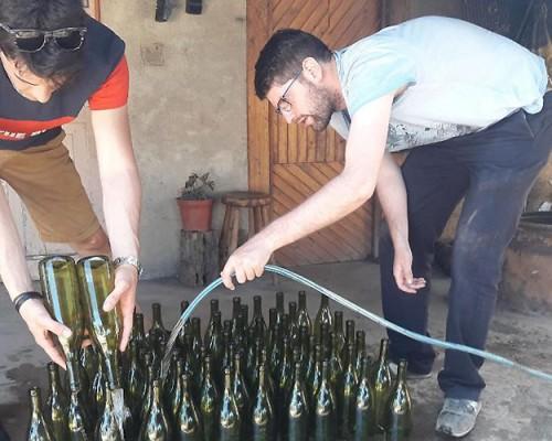 Proyecto FIA-FICr busca mejorar vinos locales del valle de Itata
