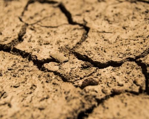 Sequía, erosión y aumento de demanda complican la disponibilidad de alimentos