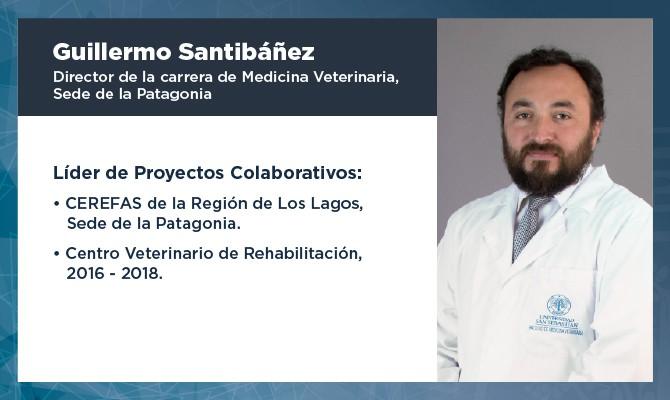 Testimonio Guillermo Santibañez