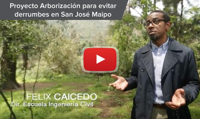 VcM Arborización
