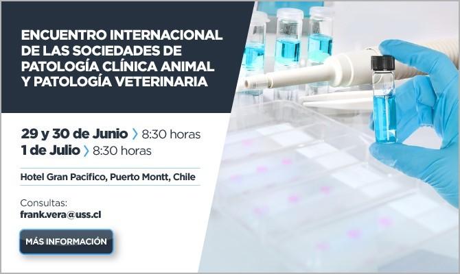 banner-veterinaria