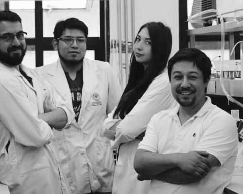 Los estudiantes; Osvaldo Paredes, Mario Maulen, María Francisca  Waymann y el doctor Waldo Díaz, director del Molecular Microbiology and Food Research Laboratory en el Campus Los Leones de Providencia.