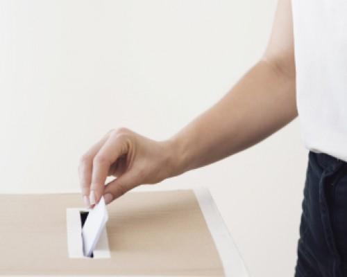 Voto obligatorio y participación