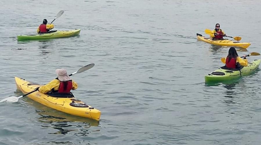 kayak en Algarrobo