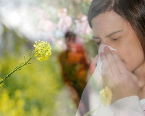 Alergia 900x600