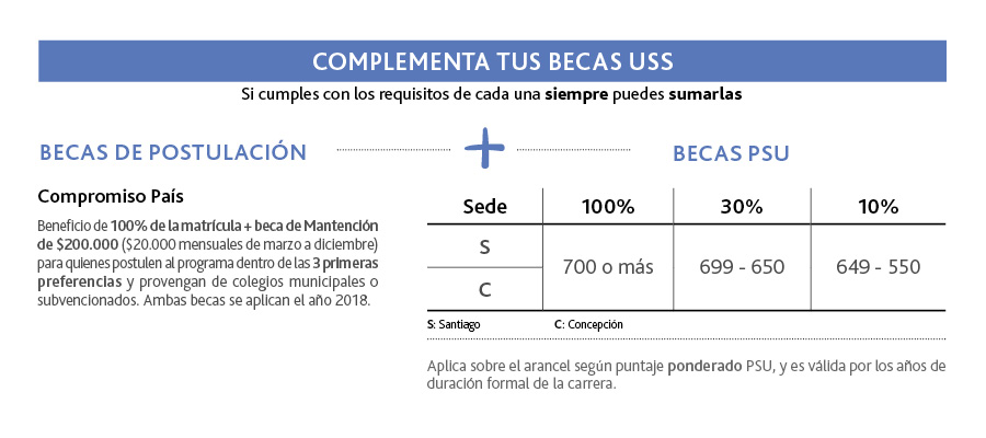 BECAS_ING-SUTAMBIENTAL_web