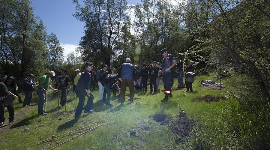 arborizacion-proyecto-vcm-034