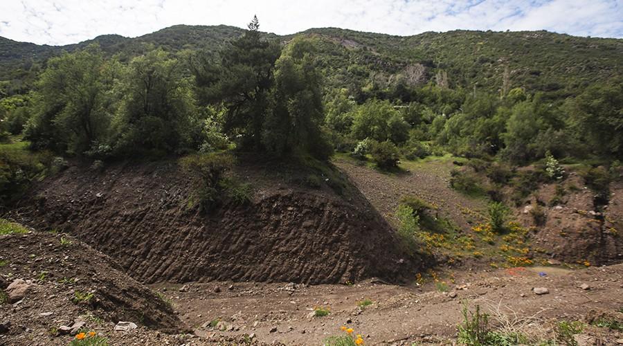 arborizacion-proyecto-vcm-078