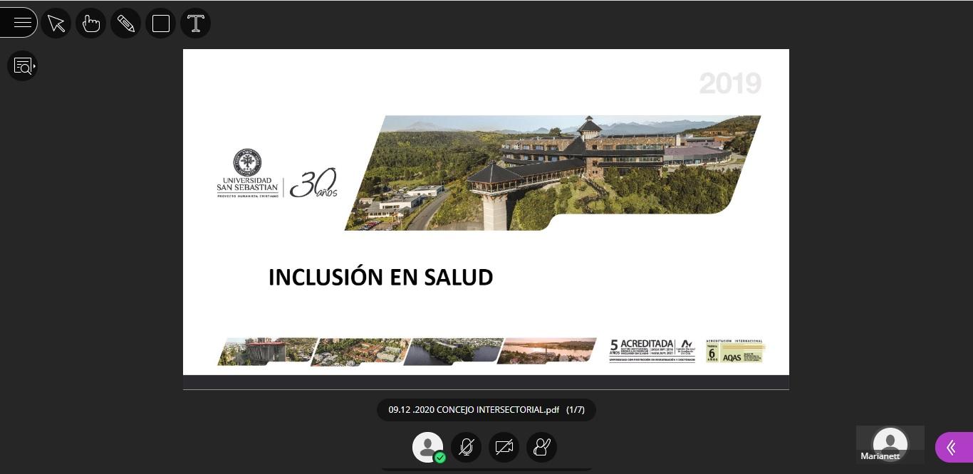 Consejo Sectorial de Medicina abordó la inclusión y la enseñanza virtual en Puerto Montt