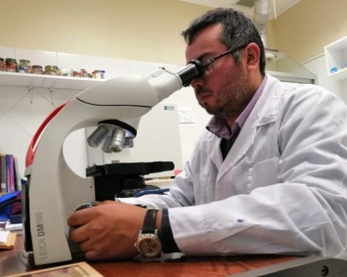 La actividad reunirá a importantes y destacados especialistas en Patología Animal en Puerto Montt.