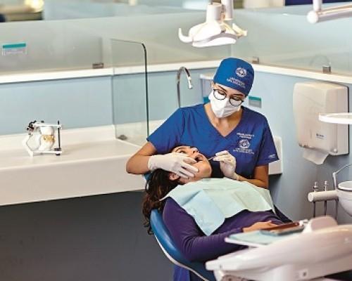 odontologia arcu-sur