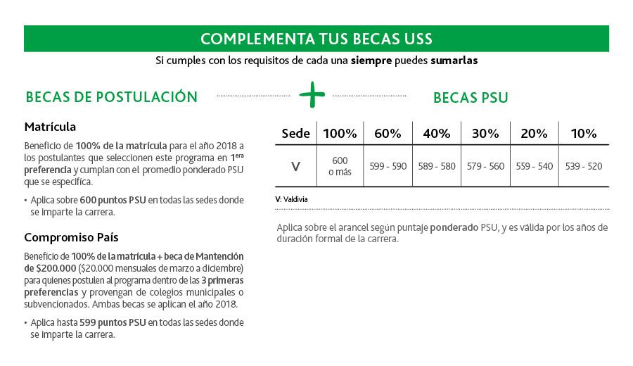 BECAS_basica-lenguaje_web